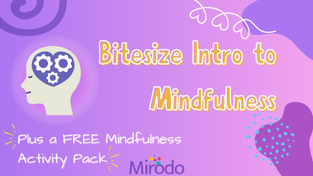 Mindfulness Mirodo Banner